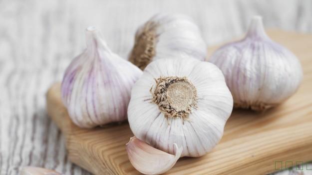 生蒜可以帮助治疗肺部感染