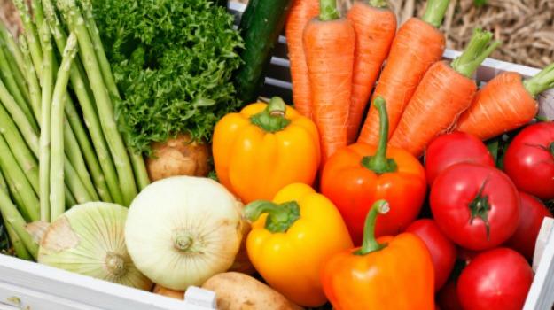 2015年世界环境日:8环保饮食习惯 - 土着产品食品